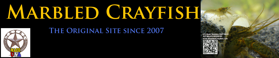 Marbled Crayfish Original Website Since 2007. True Clones!